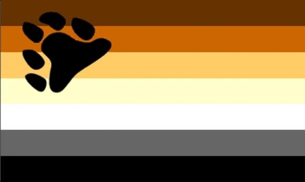 Gay Pride Bear