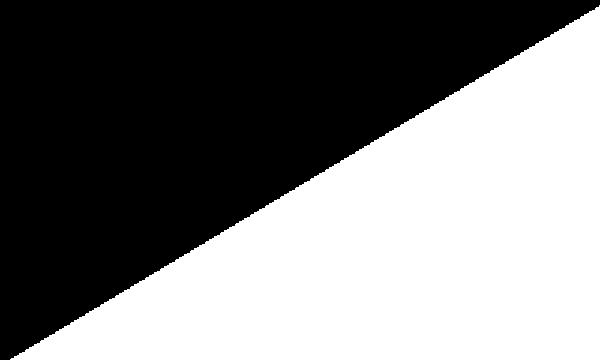 Motor Racing Black And White Diagonal